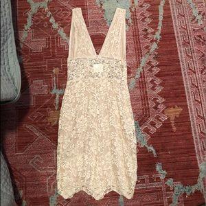 Nightcap beautiful stretch lace dress